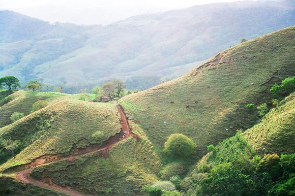 Costaricahills
