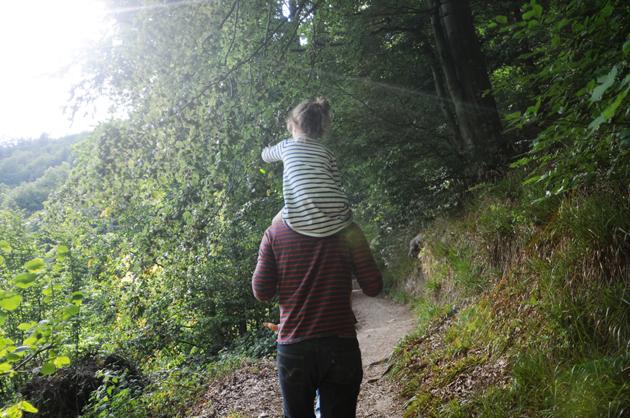 Chemin bois 1 bis